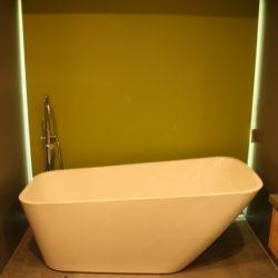 PlumberPiaraWaters_Bath1