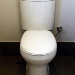 PlumberPiaraWaters_Toilet1