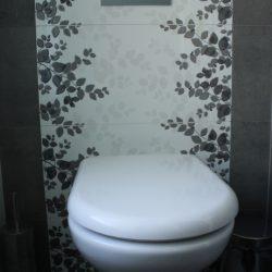 PlumberPiaraWaters_Toilet2